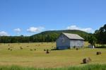 Barn in W. Pawlet.