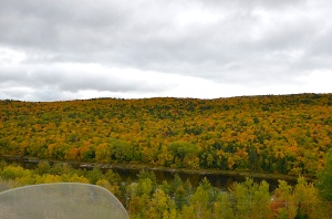 Fall foliage along the St.-Maurice River